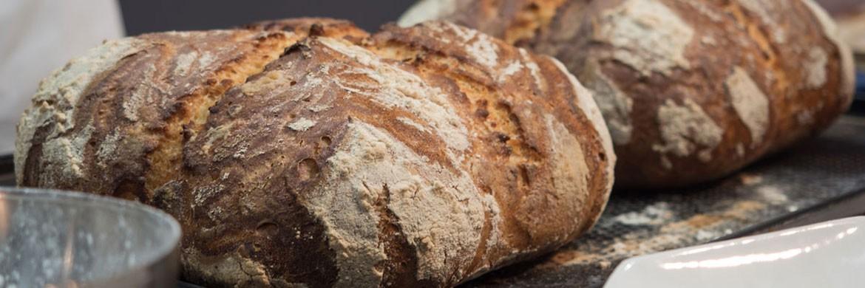 Revolution Food - I nostri Prodotti